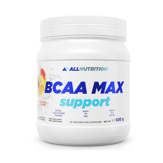 BCAA MAX support 500 gr