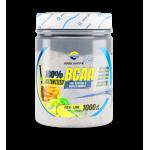 100 BCAA 1000 gr