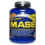 Up Your MASS 2094 gr