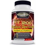 TT 1200 Tribulus terrestris 120 tabs